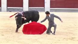 Wieder Stierkampf in Madrid