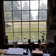 Aussicht in eine ungewisse Zukunft: Blick aus dem Arbeitszimmer von Richard Ford