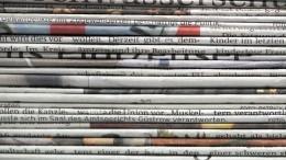 Ohne Regionalzeitungen geht nichts