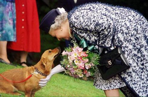 Elizabeth II. herzt einen ihrer Hunde