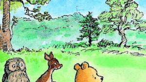 Der Bärenfreund, der zu viel wusste