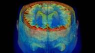 Rund zweitausend Seiten geben jetzt Einblick in Geist, Gehirn und Bewusstsein.