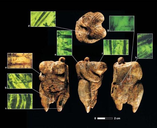 Die Photomikrographie veranschaulicht die Verarbeitungsweise des Elfenbeins