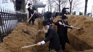 Wer ist schuld am Judenmord in Iaşi?