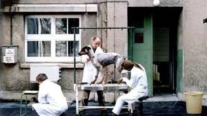 Ostdeutsche Galeristen stehen im Schatten