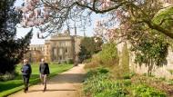 Lane Fox' Reich: Magnolien vor Oxfords New College