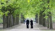 Welche soziale Realität wird wahrgenommen? In einer Allee des Berliner Tiergartens