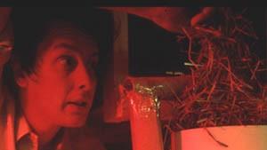 Politisch explosiv, ästhetisch makellos - die Documenta11, ein dritter Rundgang