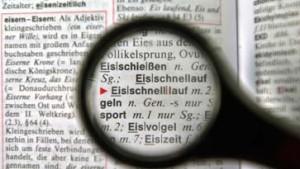Die Deutsche Akademie boykottiert den Sprachrat