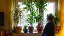 Blick aus dem Fenster: Eine ambulante Behandlung ermöglicht psychisch Kranken den Verbleib in der eigenen Wohnung