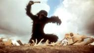 """Karriere eines Knochens: Die berühmte Szene aus Stanley Kubricks """"2001: Odyssee im Weltraum"""" ist ein Referenzpunkt in Roberto Simanowskis Buch."""
