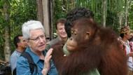Ihn laust der Affe