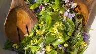 Gänseblümchen, Löwenzahn, Taubnessel und Gundermann: Ein Kräutersalat kann äußerst vielfältig sein.