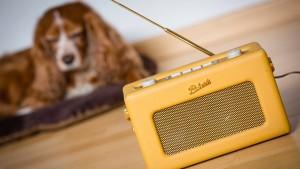 Die meisten Deutschen vertrauen dem Radio
