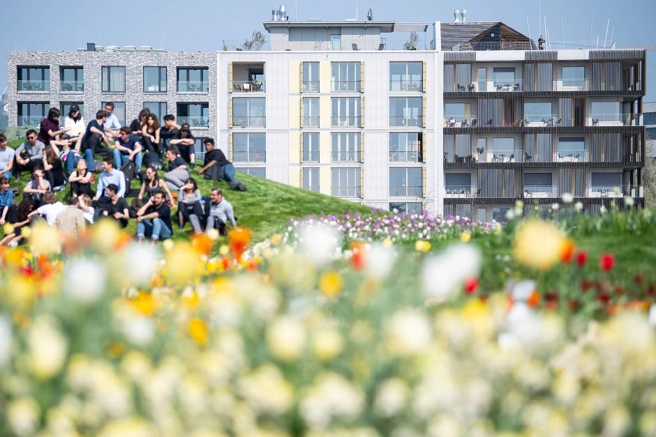 Was die Wohnungen wohl wieder kosten: Klotzarchitektur auf dem Buga-Gelände.