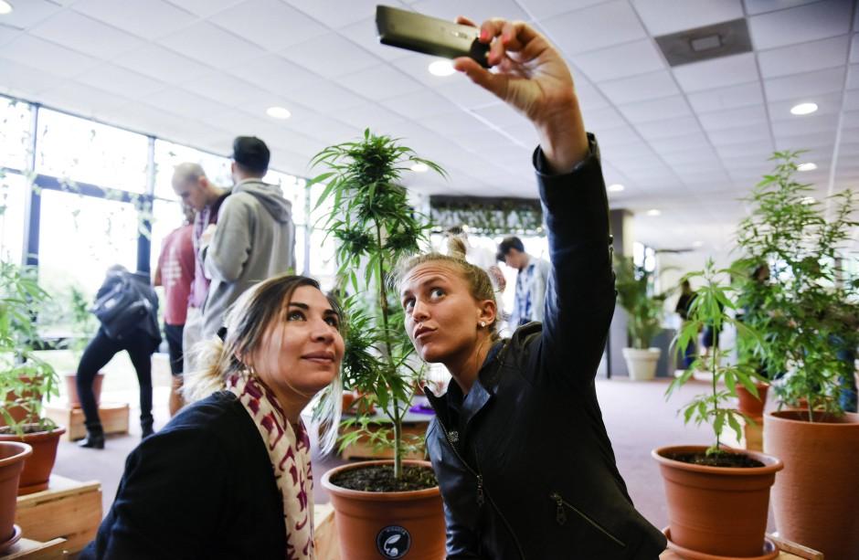 Cannabis, die sympathische Droge mit Bioladenflair – hier bei einer Hanfmesse in Montevideo.