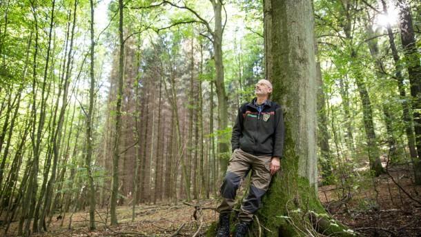 Wood amazon web services