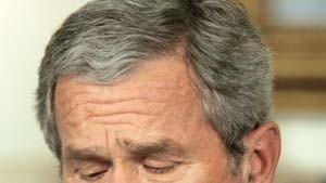 Bush verteidigt Recht auf Waffenbesitz