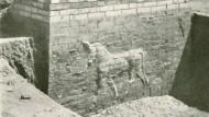 Auf einmal gibt der Lehm das heilige Tier des babylonischen Wettergottes frei: Ausgrabung des Ischtar-Tors.