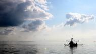 Gegen Ende des neunzehnten Jahrhunderts entstand die Berufsfischerei mit Krabbenkuttern, die das Wattenmeer im großen Stil und in wenigen Jahrzehnten beinahe leer fischten.