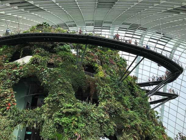 Bildergalerie Singapur Lasershows Und Hängende Gärten Bild 4 Von