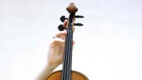 hoch violine