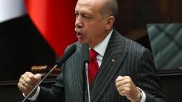 Erdogans Putsch