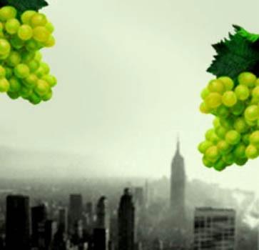 Man Reibt Sich Die Augen: Deutscher Wein In New York