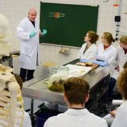 Räumliche Enge soll bei Prüfungen im Medizinstudium derzeit tunlichst vermieden werden.
