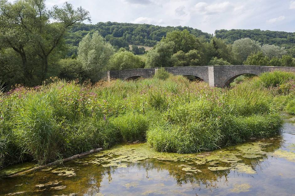 So viel unbegradigte Wasserlandschaft sieht man heute selten, und weil auch Autos eher sporadisch über die Brücke rollen, bleibt Muße, das Wasserlabyrinth genauer zu betrachten.
