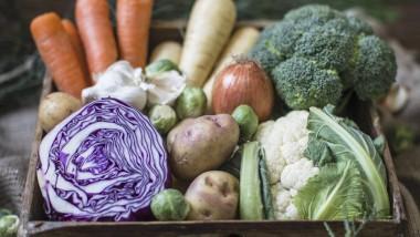 Köstlich: Herbst- und Wintergemüse