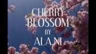 Ala.Ni: Cherry Blossom