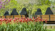 Die islamische Gegenrevolution