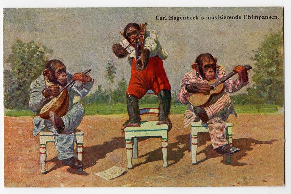 Carl Hagenbeck`s musizierende Schimpansen