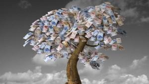 Wenn das Geld auf den Bäumen wächst
