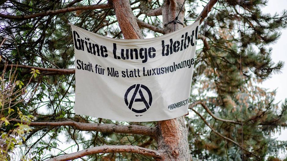 """Baumhoch: Protest gegen das geplante Wohnquartier """"Günthersburghöfe"""" in Frankfurt."""