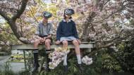 Es ist alles so schön bunt hier: Mit der VR-Brille sieht man mitunter den Wald vor lauter blühenden Bäumen nicht.