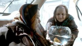 """Videokritik """"Taxi Teheran"""": Die komische Hölle eines Lebens im Arrest"""