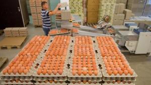 Deutschland blockiert Veröffentlichungen zum Eier-Skandal