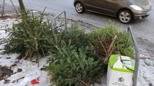 Wie Weihnachtsbäume nach dem Fest entsorgt werden