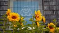 Der Kurs der Thyssen-Krupp-Aktie soll nach der Fusion weiter erblühen - hoffen viele Anleger.