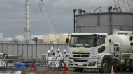 Koreaner untersuchen Fisch aus Fukushima