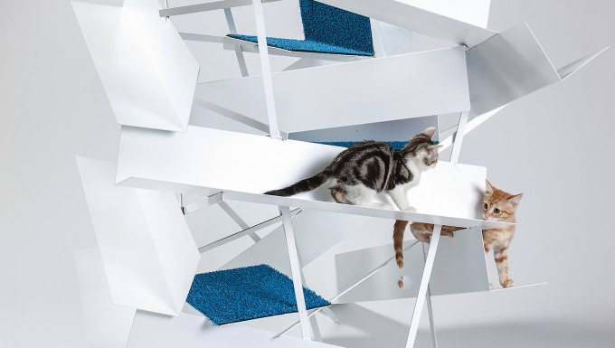 Hier können kleine Kätzchen schön verstecken spielen.