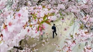 Die Wirtschaft im Frühling