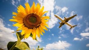 Trotz ihrer Angst ums Klima fliegen die Deutschen immer öfter