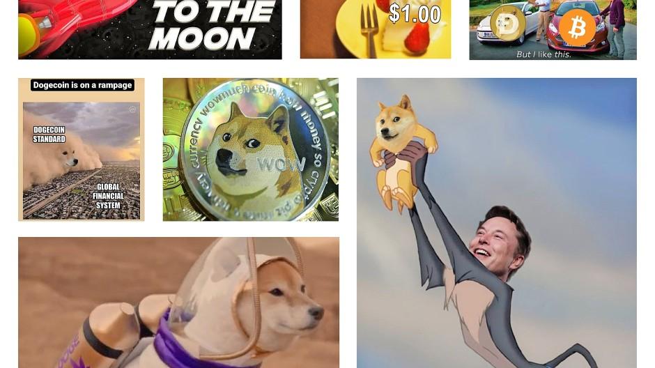 Die Hunderasse Shiba Inu steht für Dogecoin. Tesla-Gründer Elon Musk twittert darüber gerne lustige Bildchen.