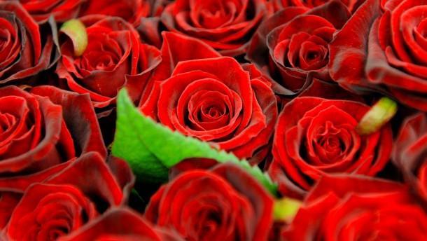 Die schönsten Blumen zum Muttertag aus dem Internet