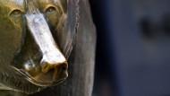 Starker Euro und schwache Anleihen drücken Dax ins Minus