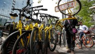 Die Fahrräder zum Ausleihen stehen in Beijing gefühlt an jeder Ecke, hier vom Anbieter Ofo.