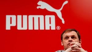 Puma ist wieder freier